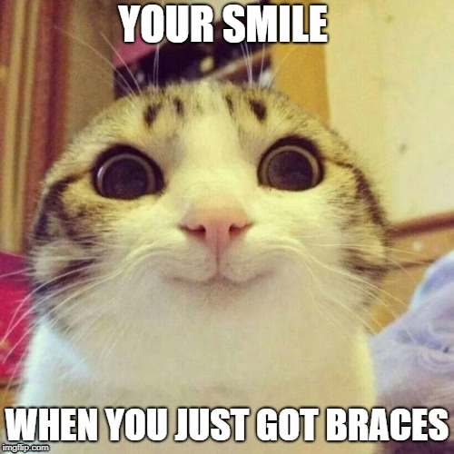 "Meme of a cat with the text ""your smile when you just got braces."""
